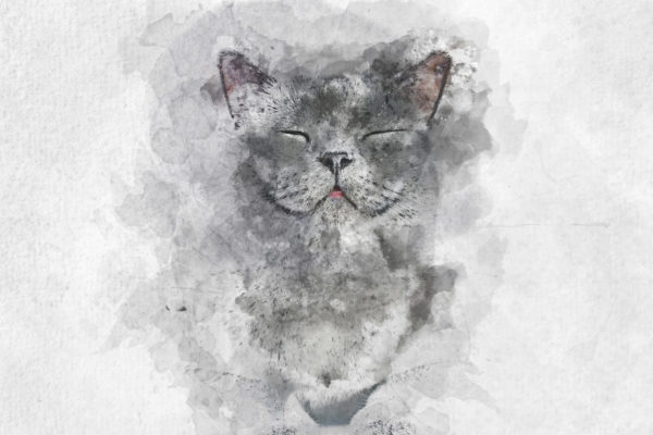 Watercolor painting of happy British Shorthair cat